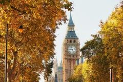大本钟在晴朗的秋天天 免版税图库摄影