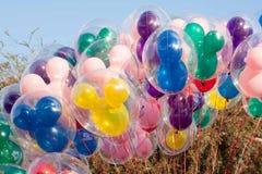 大束在迪斯尼乐园的米老鼠气球 免版税库存图片