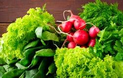 大束新有机菜、萝卜、菠菜、沙拉和绿色在老木桌,特写镜头上 图库摄影