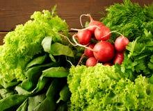 大束新有机菜、萝卜、菠菜、沙拉和绿色在老木桌,特写镜头上 库存图片