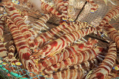 大条纹大虾 免版税库存照片