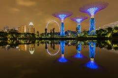大树光展示夜间,新加坡 图库摄影