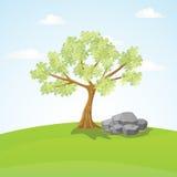 大树和岩石在小山 免版税图库摄影