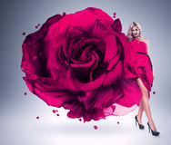 大桃红色玫瑰礼服的微笑的妇女 库存图片