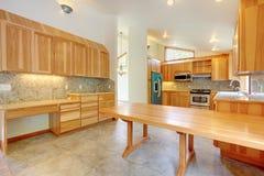 大桦树自定义家庭厨房内部 库存照片