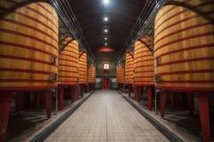 大桶行在Rioja酿酒厂 免版税库存照片
