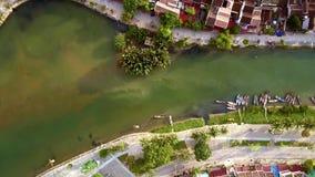 大植物在河水小船增长被停泊在江边 影视素材