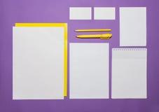 大模型与卡片,纸,笔的企业模板 淡紫色背景 免版税库存照片