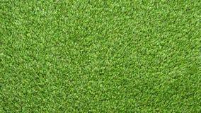 大模型的室外绿草领域背景 免版税库存图片