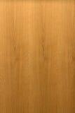 大橡木纹理 免版税库存照片