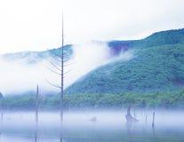 大正池塘 图库摄影
