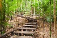 大汉山国家公园国家公园 免版税图库摄影