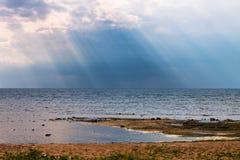 大池塘的岸 免版税库存图片