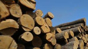 大注册锯木厂 影视素材