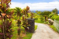 大海岛夏威夷kilawea心脏的volcan 免版税库存照片