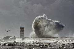 大海波浪飞溅 库存图片