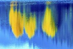 大海Yewllow树反射摘要Gold湖秋天锡 库存图片