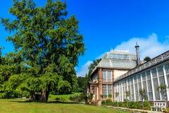大温室在卡塞尔在城堡公园,北部黑森,德国 库存照片