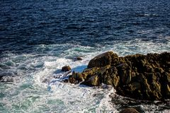 大漩涡在离新斯科舍的附近大西洋海岸  免版税图库摄影