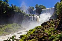 大瀑布在伊瓜苏/阿根廷 免版税图库摄影