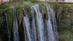 大瀑布在公园在夏天 股票录像