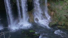 大瀑布在公园在夏天 股票视频