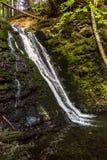 大瀑布在喀尔巴阡山脉的森林里 库存照片