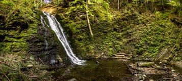 大瀑布在喀尔巴阡山脉的森林里 免版税库存图片