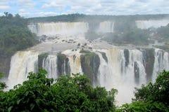 大瀑布在密林森林里 免版税库存图片