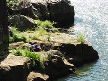 大瀑布峡谷的,朗塞斯顿,塔斯马尼亚岛南Esk河 库存照片