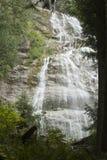 大瀑布 库存照片