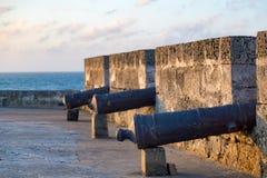 大炮和海洋 库存照片