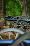 大炮在森林 免版税库存照片