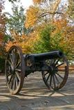 大炮在秋天(垂直) 库存照片