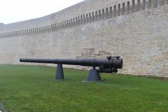 大炮旧港口安科纳 库存照片