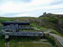 大炮的特写镜头在圣约翰` s newf的俯视港口 免版税库存图片