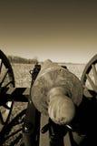 大炮gettysburg 库存图片