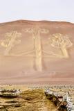 大烛台形象, Paracas公园,秘鲁 免版税库存图片