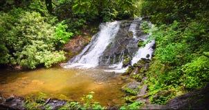 大烟山国家公园风景风景 免版税库存照片