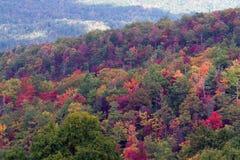 大烟雾弥漫的山脉国家公园 免版税库存照片
