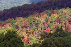 大烟雾弥漫的山脉国家公园 库存图片