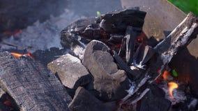 大煤炭在格栅烧并且闷燃 股票录像