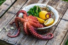 大煮沸的章鱼用柠檬和荷兰芹,土气样式 图库摄影