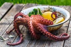 大煮沸的章鱼用柠檬和荷兰芹,土气样式 免版税库存照片