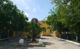 大牧场finca牧场墨西哥梅里达农厂殖民地假日温泉尤加坦 免版税库存图片
