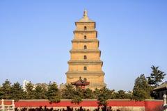 大狂放的鹅塔XI瓷 库存照片