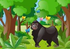 大猩猩和蝴蝶在森林里 皇族释放例证