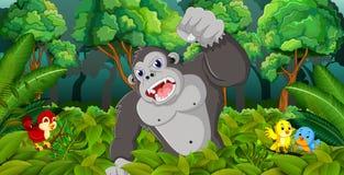 大猩猩在森林里 皇族释放例证