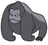 大猩猩 向量例证
