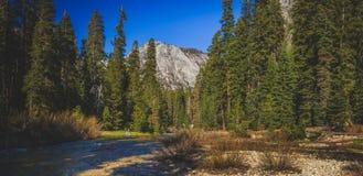 大理石叉子Kaweah河和山 库存图片